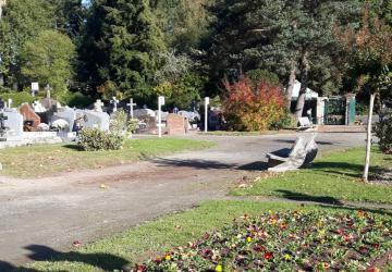 Les fleurs poussent peu à peu dans les allées du cimetière